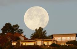 Moon set - photo by Annie Fox
